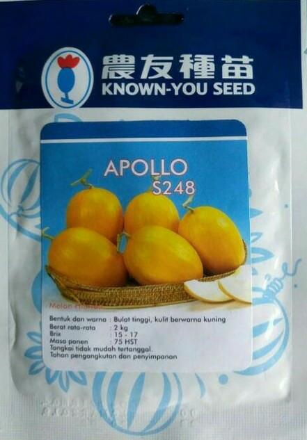 harga Benih melon golden apollo s248 (re) isi 50 seed Tokopedia.com