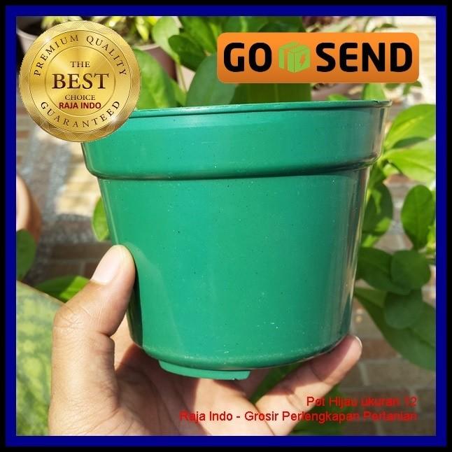 Pot Bunga 12cm Hijau Tanaman Hias Grosir Plastik 12 Cm