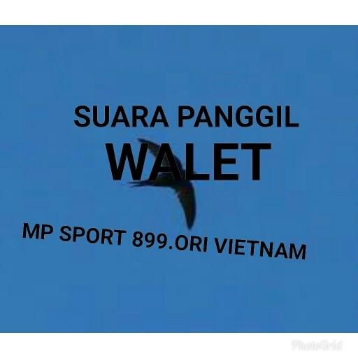 Foto Produk SUARA WALET PANGGIL PANCASONA RAJA SEDOT dari ZAHRA OFFICAL STORE