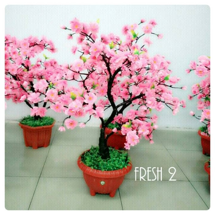 Jual Bunga Sakura 60cm Pohon Mehwa Motif Bonsai Jakarta Barat Fresh 2 Tokopedia