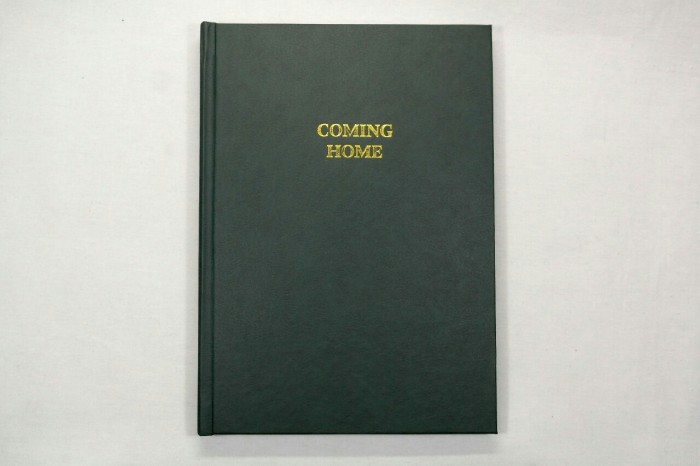 harga Tandia bambang permadi - coming home buku foto photobook Tokopedia.com
