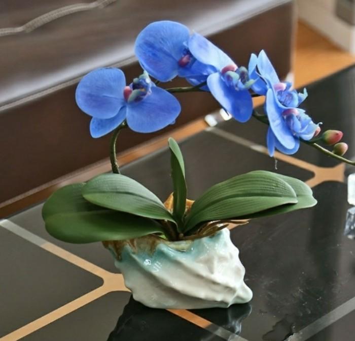 Jual Rangkaian Bunga Anggrek Latex Premium Import-Pot Keramik Kerang ... e94d525c2e
