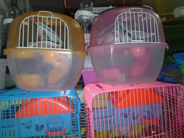 harga Kandang hamster travel apple Tokopedia.com