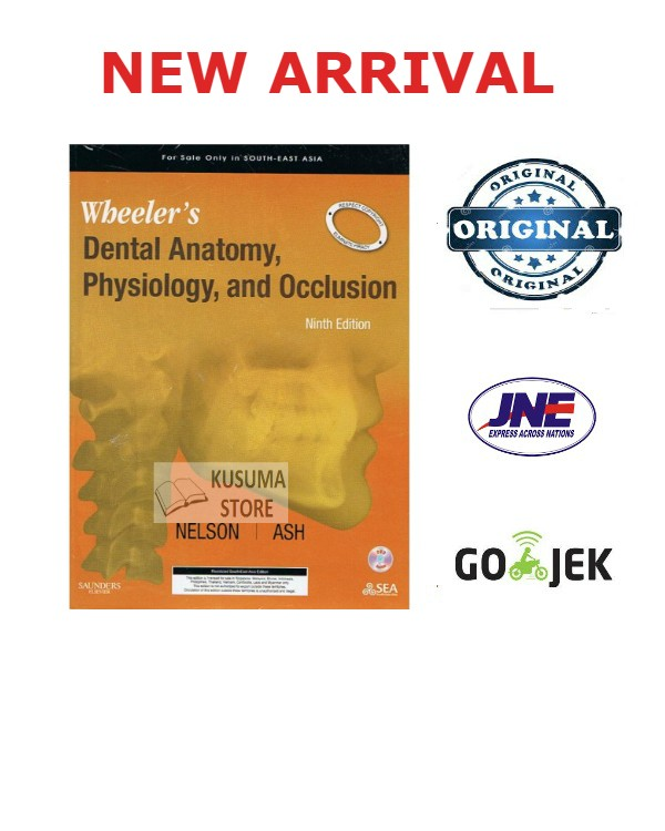 wheelers dental anatomy physiology and occlusion 9e