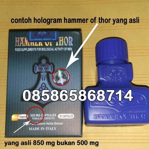 jual hammer of thor tokopedia www mamapuas pw jual hammer of