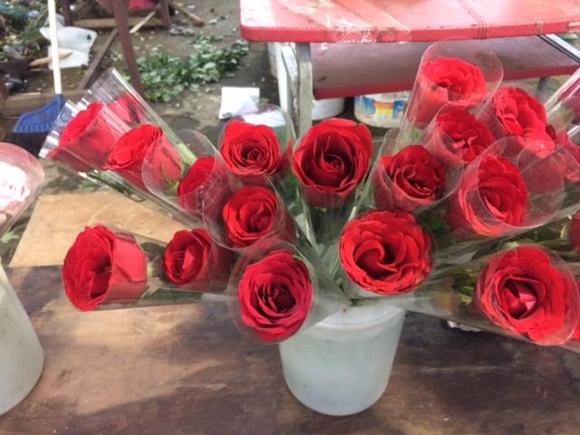 Jual Setangkai Bunga Mawar Asli - Toko HRP  9c152053b2