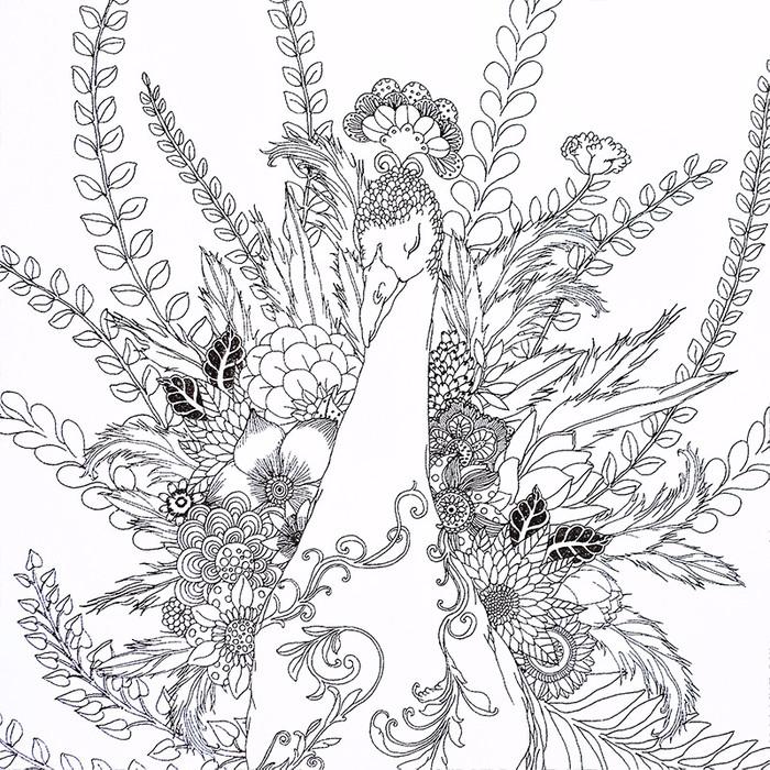 Dream Forest Coloring Book Buku Gambar Mewarnai