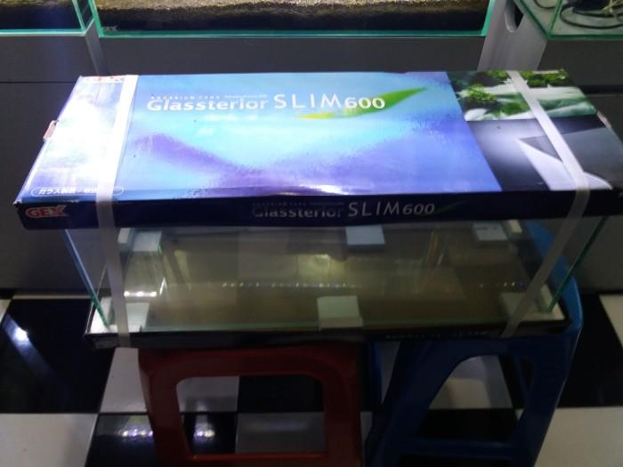 Jual Aquarium Gex 60cm Slim Kota Surabaya Aquarepens Aquatic Tokopedia