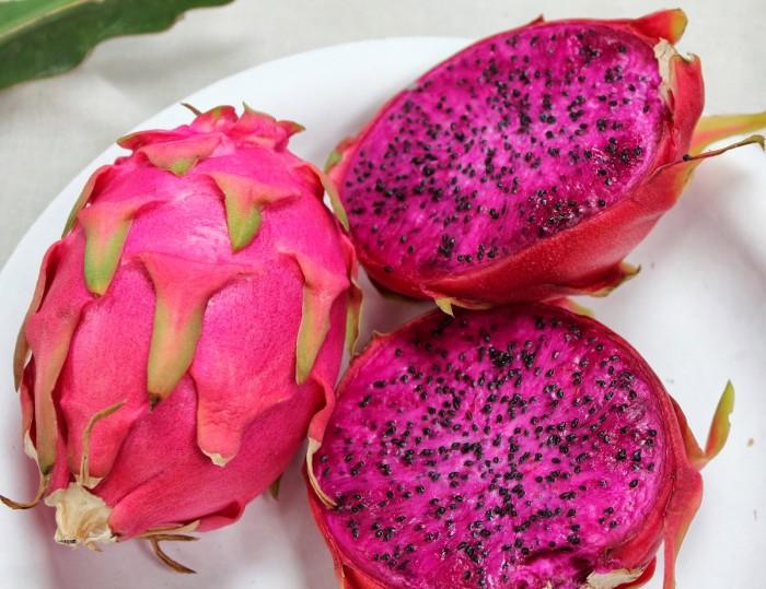 biji/benih/bibit buah naga merah