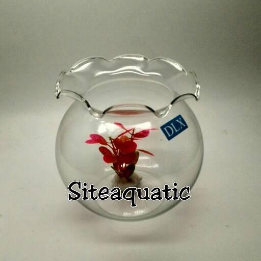harga Aquarium Toples Ikan Shella 1,5l Khusus Gosend Tokopedia.com