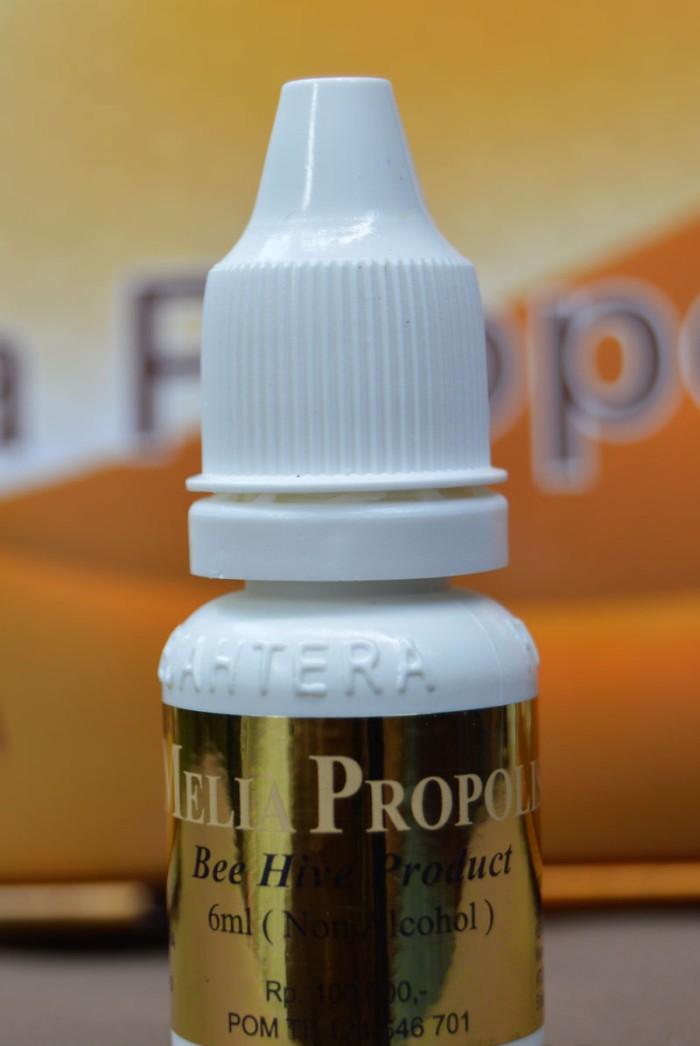 Foto Produk Melia Propolis 100% Original NO KW di JAMIN (BOTOLAN) dari Supplier Herbal ORI 100%