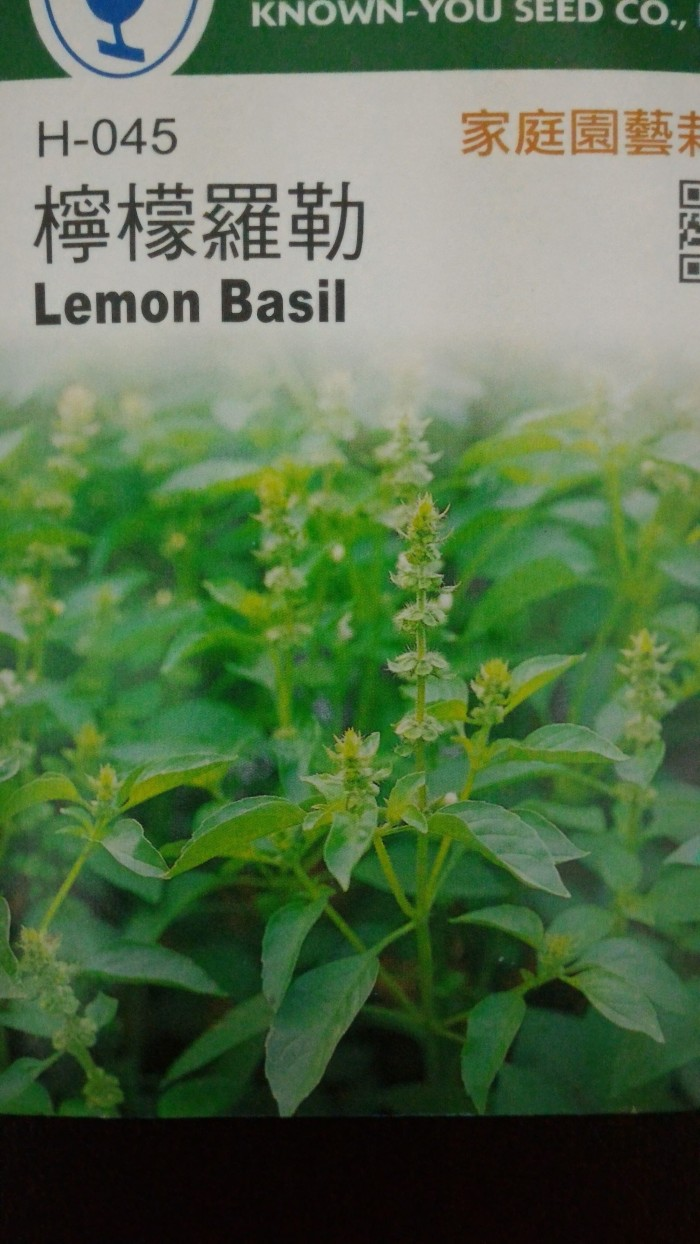 Benih / BIbit Herbal Kemangi LEMON BASIL 200 Butir ( Home Garden )