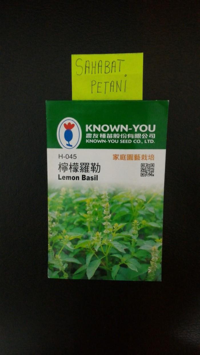 Jual Benih Bibit Herbal Kemangi Lemon Basil 200 Butir Home Garden Harga Rp 23.000