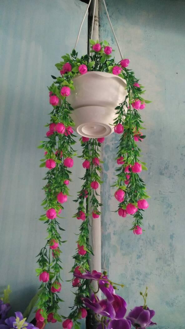 Desain Taman Bunga Gantung  jual bunga hias gantung kab bekasi flowers sakura collectio tokopedia
