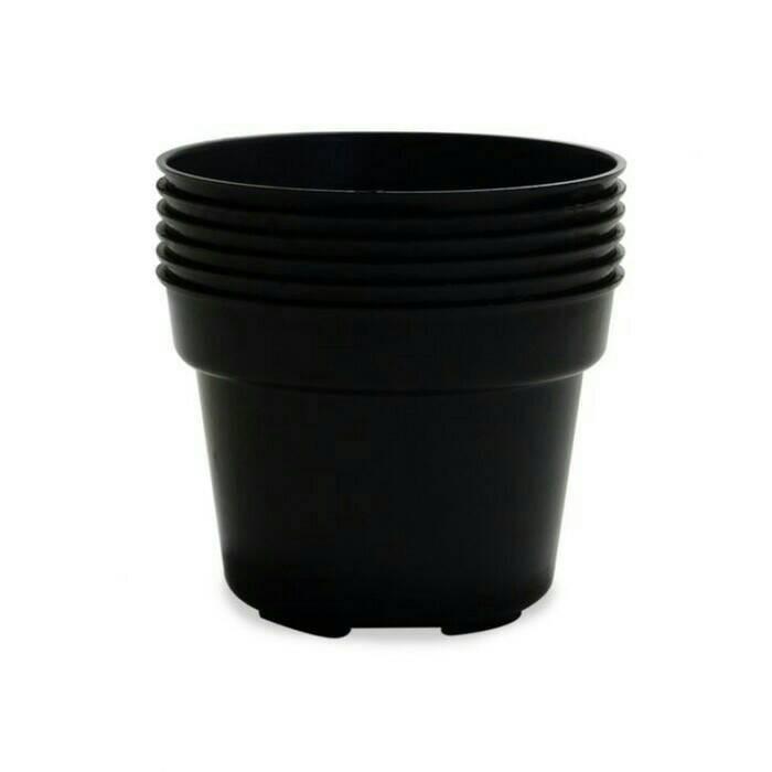 harga Pot Plastik Hitam 10cm Tokopedia.com