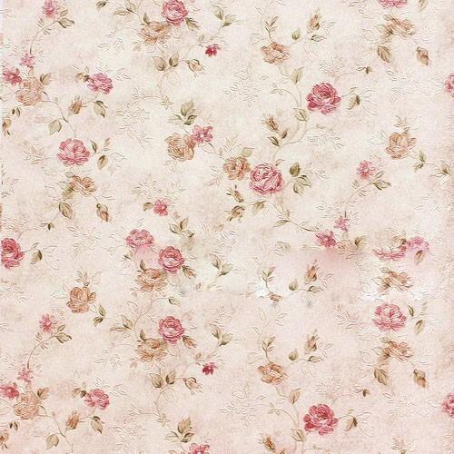 Unduh 54 Koleksi Wallpaper Wa Bunga Paling Keren