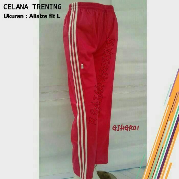 Celana olahraga / training / pria & wanita / bawahan