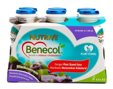 harga Nutrive Benecol Blackcurrant 6btl Tokopedia.com
