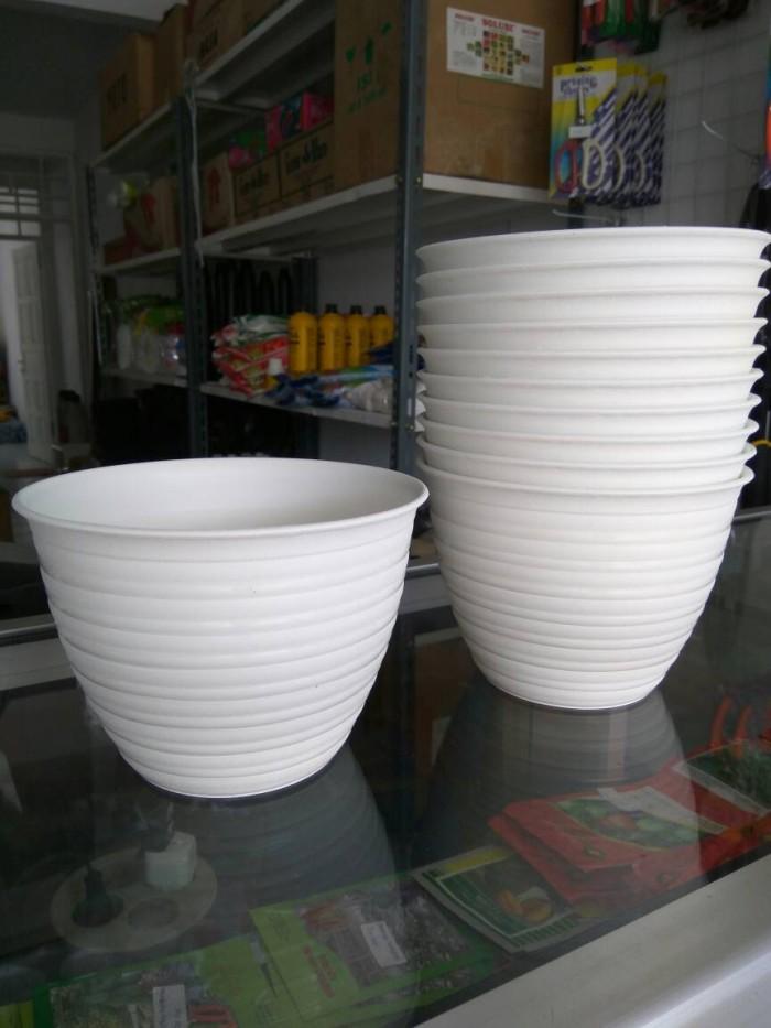 Foto Produk Pot Tanaman dan Bunga Plastik Putih Tawon 15 cm dari Toko Debby