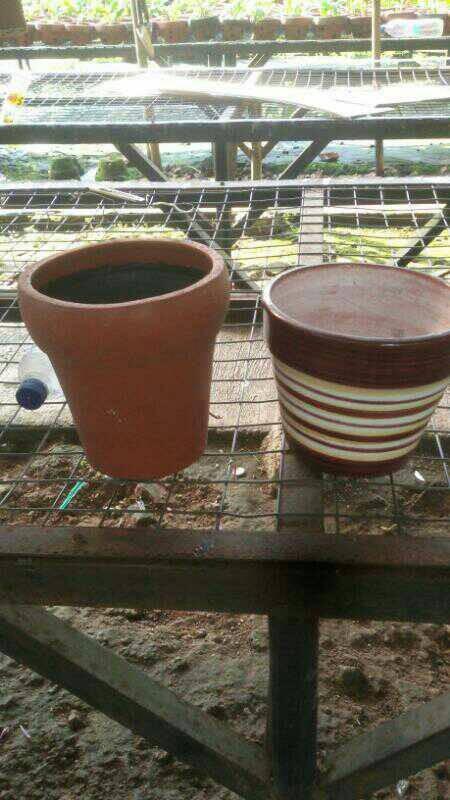 Jual Pot Isi 2 Dua Anggrek Vas Bunga Bahan Keramik Tanah Liat Jakarta Selatan Toko S A Tokopedia