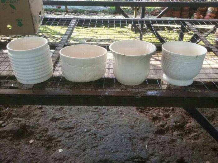 Jual Pot Isi 3 Tiga Anggrek Vas Bunga Bahan Keramik Tanah Liat Jakarta Selatan Toko S A Tokopedia