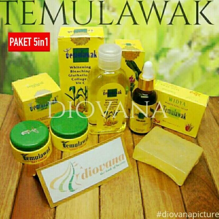 [5in1] Paket Temulawak - Cream Siang & Malam + Sabun + Toner + Serum