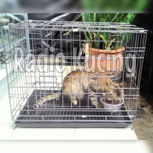 harga Kandang kucing/anjing/guinea pig/kelinci murah bandung Tokopedia.com