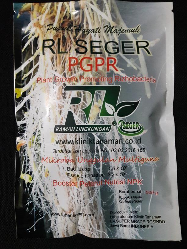 Foto Produk PGPR RL SEGER dari Rizki Bertani RL