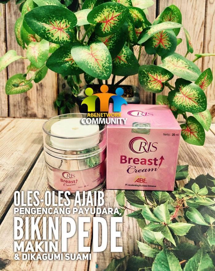 Foto Produk Oris Breast Cream Pengencang Payudara dari Abe Online Store