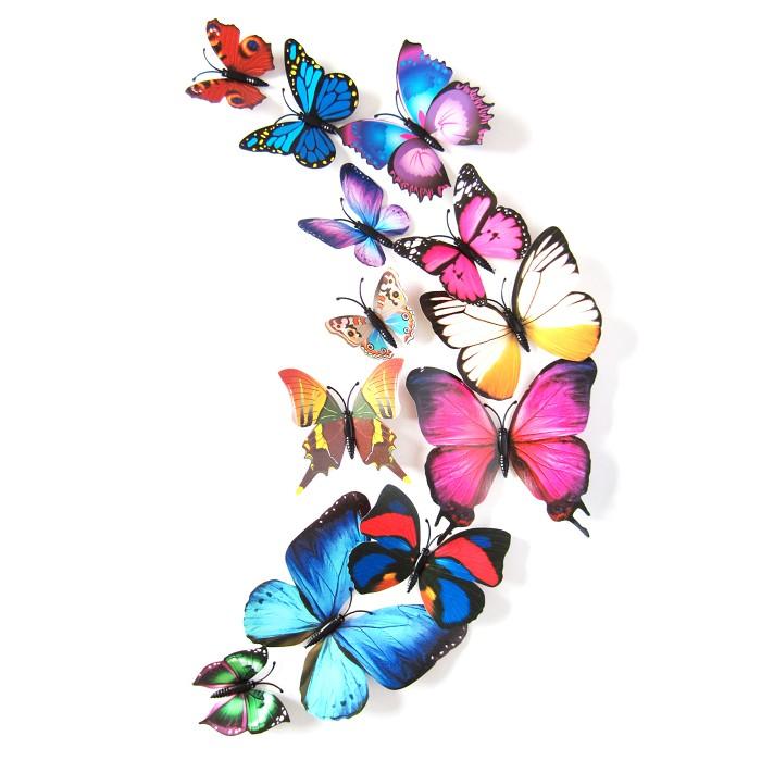 Jual 3d Butterfly Wall Sticker Stiker Dinding Kupu Kupu 3d Dgn