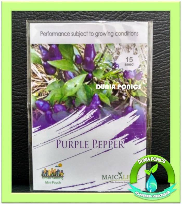 1 Pack Benih Cabe Ungu Cabai Purple Pepper Maica Leaf 15 Seed