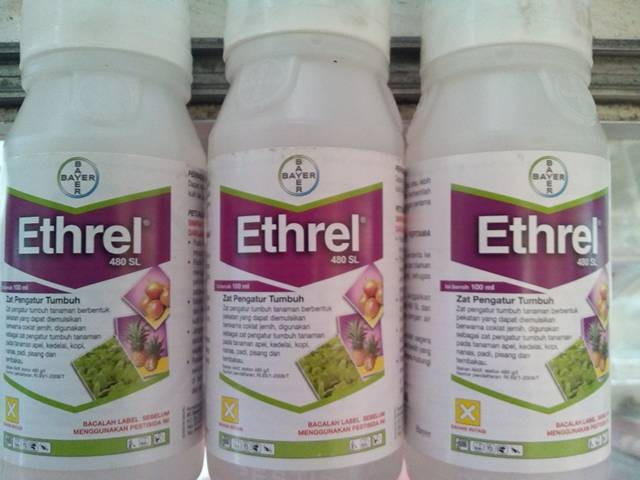 ZPT Ethrel 480SL 100ml Etefon 480g/l Bayer