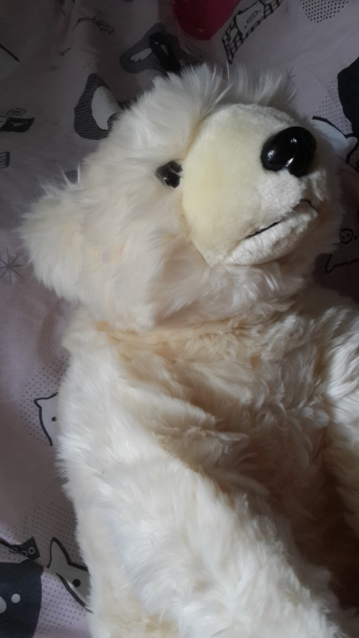 Jual Boneka Beruang Kutub Kota Tangerang Boneka Happy