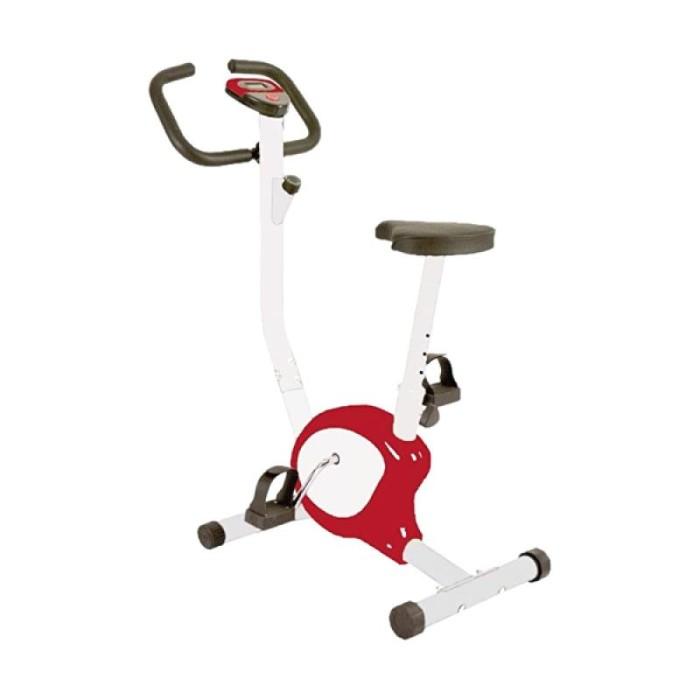 Upright bike magnetic tl8215