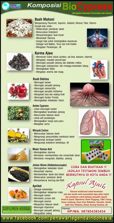 Jual Agen Biocypress Pil Ajaib Solusi Masalah Penyakit Sendi 20 Syaraf