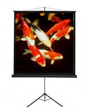 Screen projector tripod brite 96  tri 2424