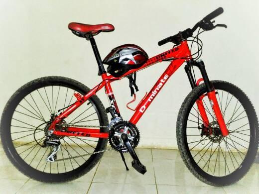 Jual Sepeda MTB United Dominate 013 Kota Depok