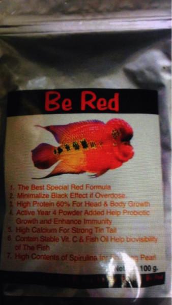 Harga Ikan Louhan Travelbon.com