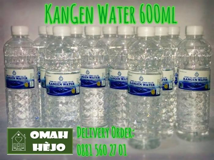 harga Kangen water ph 9.5 (24 x 600ml) Tokopedia.com