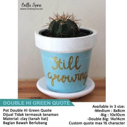 jual pot tanaman kaktus amp sukulen blue mint quotes clay