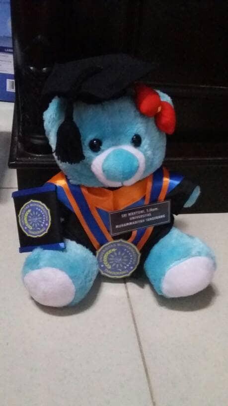harga Boneka wisuda bear biru 27cm Tokopedia.com