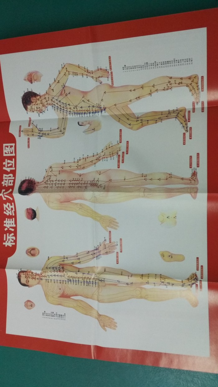 Jual Pen Meridian Akupuntur Jing Luo Bi Tcm Store Tokopedia
