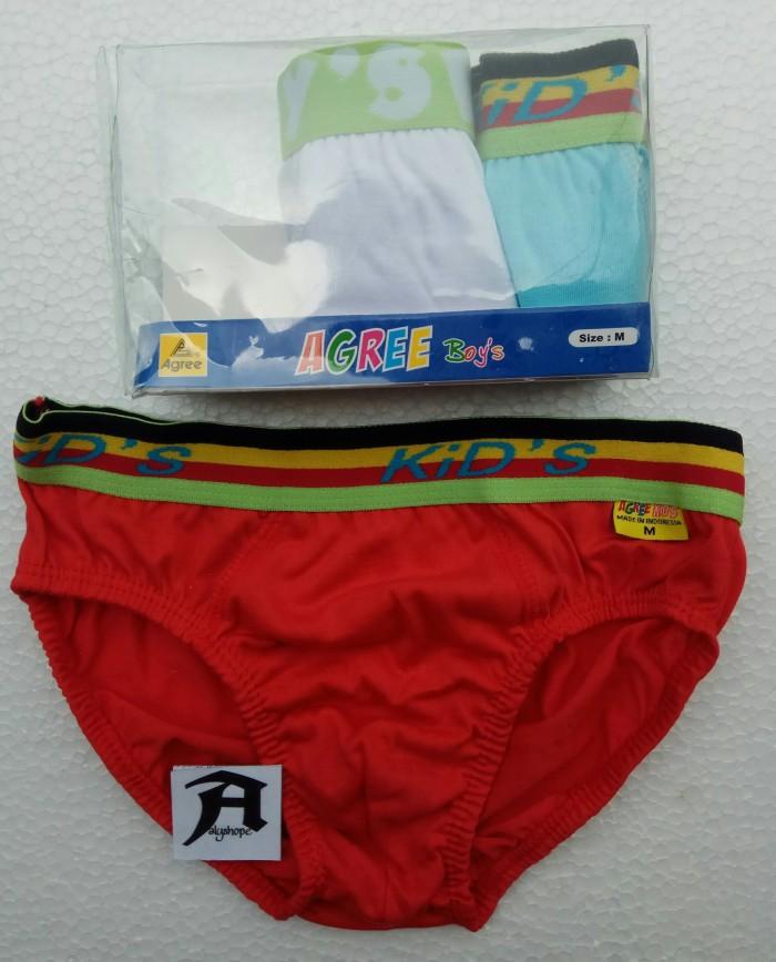 harga Celana dalam anak pria / agree boy's / cd anak / cd / 1 dus isi 3 pcs Tokopedia.com