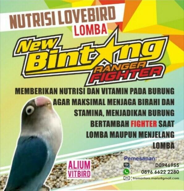 "PAKAN RACIKAN LOMBA LOVE BIRD "" NEW BINTANG RANGER FIGHTER """