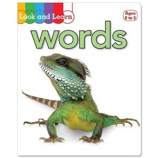 Look and Learn WORDS Board Book
