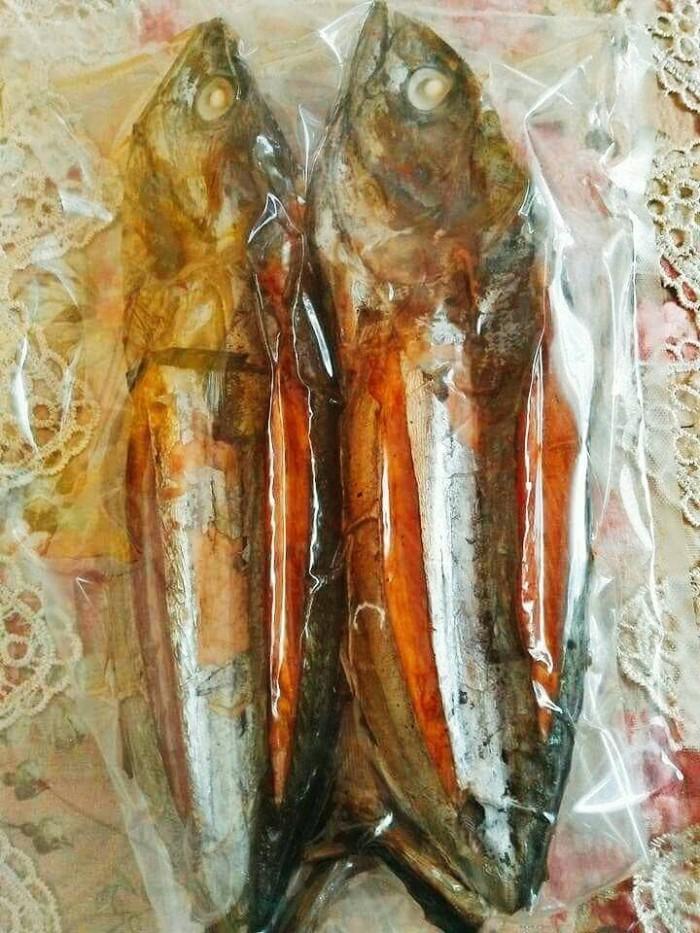 Unduh 930+ Gambar Ikan Cakalang Fufu Terbaru