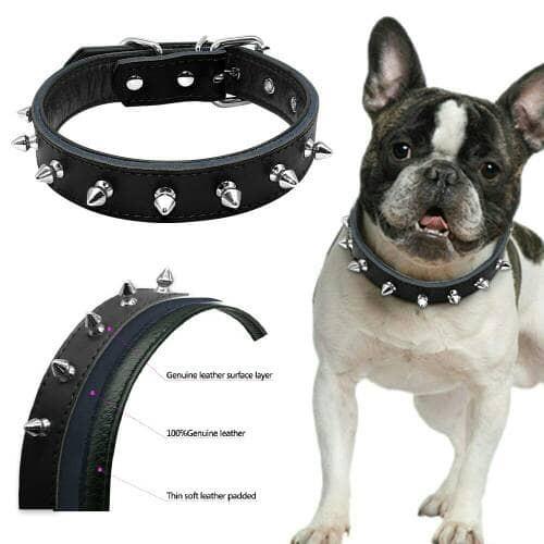 harga Kalung anjing tali kucing hewan dog collar pitbull leather black Tokopedia.com