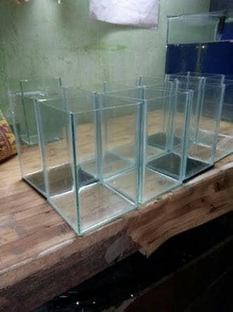 harga Akuarium aquarium botol toples cupang guppy aquascape murah ikan hias Tokopedia.com