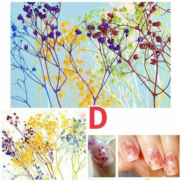 Nail Art Bunga: Jual Dried Flower D Bunga Kering Hiasan Resin Bahan Nail