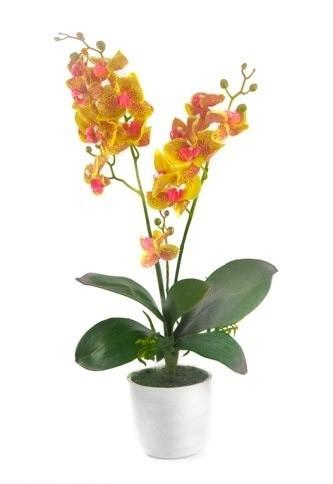 Jual Bunga Anggrek Latex Lateks Premium Artificial - Tanaman Plastik ... 8f112a74b9